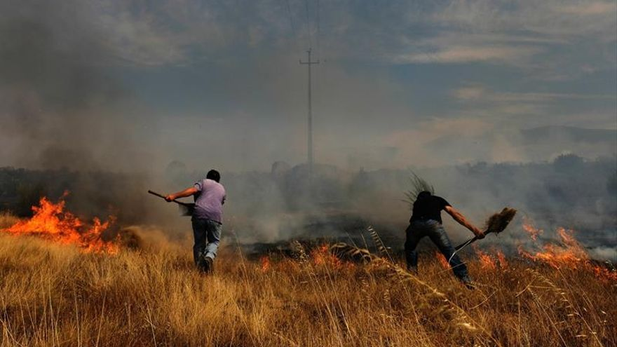 Remite la intensidad de los últimos incendios forestales en Portugal