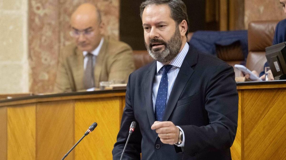 El presidente del PP de Córdoba y diputado andaluz, Adolfo Molina.