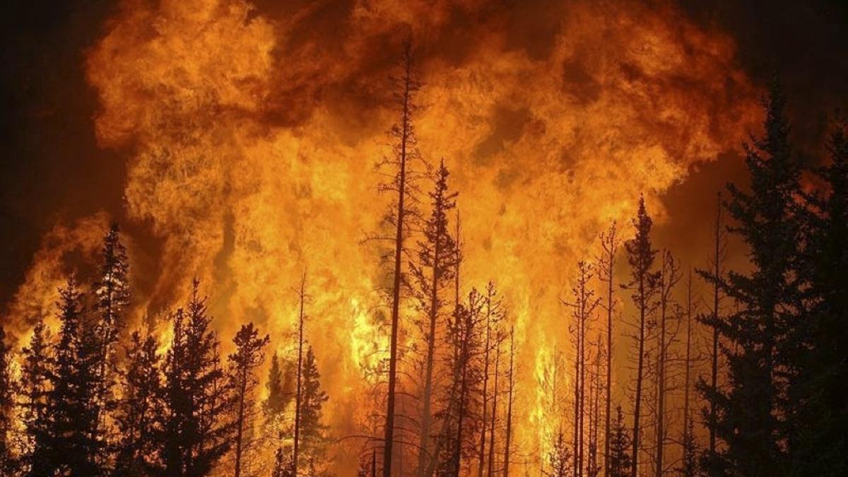 Los pirocúmulos, nubes de fuego que avivan los incendios forestales