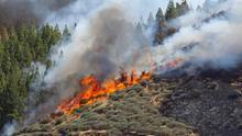 Vista del incendio declarado este sábado en la zona de Artenara en el oeste de la isla de Gran Canaria. EFE/Elvira Urquijo A.
