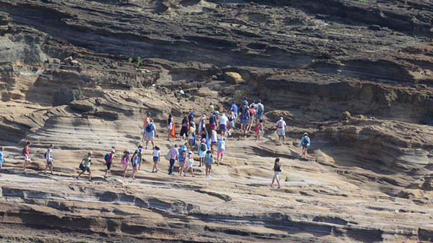 Excursión ilegal de 90 personas en Alegranza, caminando sobre un área de nidificación de aves rapaces. Fotos: cedidas.