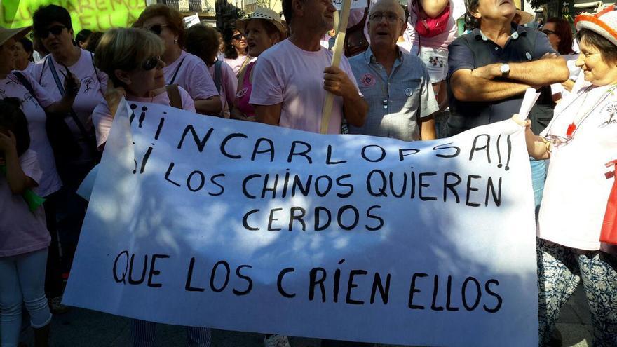 Pancartas en Zocodover contra la promotora de la macrogranja en Zarzuela (Cuenca)