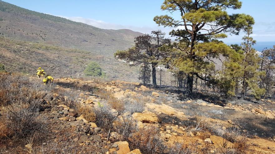 Estabilizado el incendio forestal originado este domingo en Candelaria