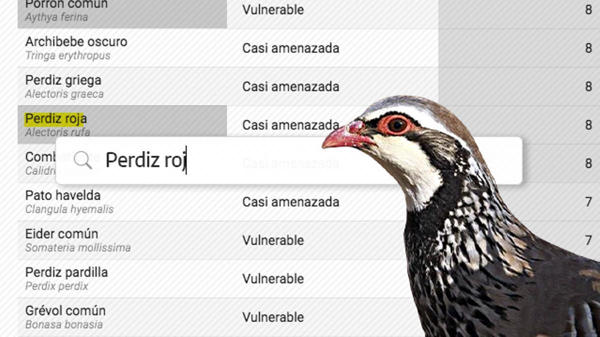 Aves en mal estado