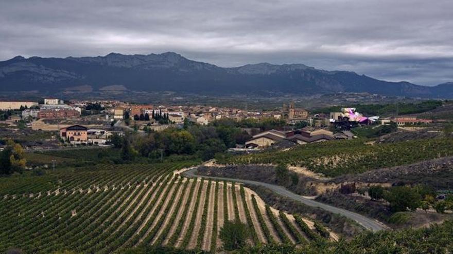 Paisaje de La Rioja Alavesa, con la localidad de Elciego al fondo. Foto: Santos Cirilo