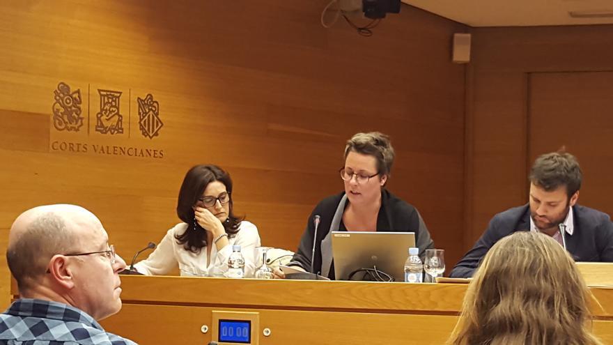 María José Mira, en el centro, en las Corts Valencianes.
