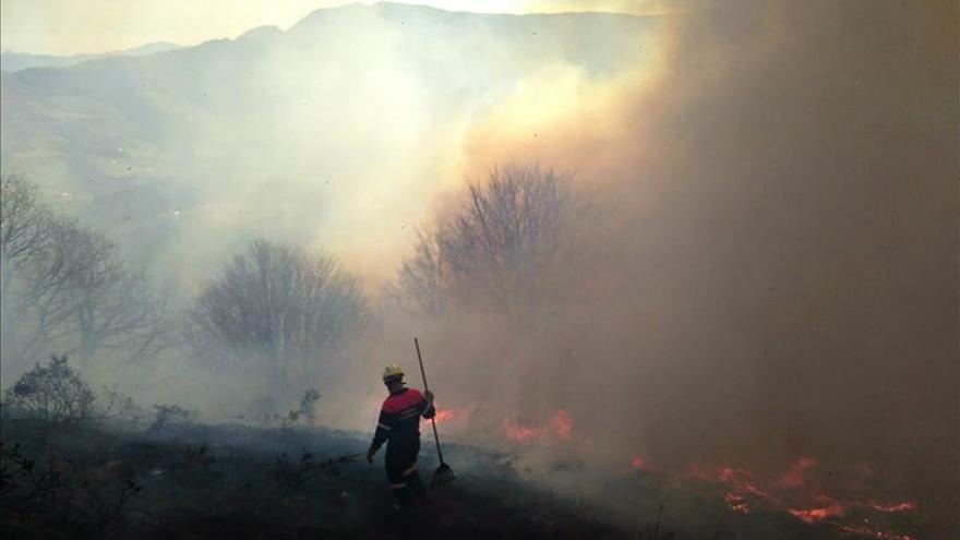 El incendio forestal de Arantza (Navarra) se reactiva