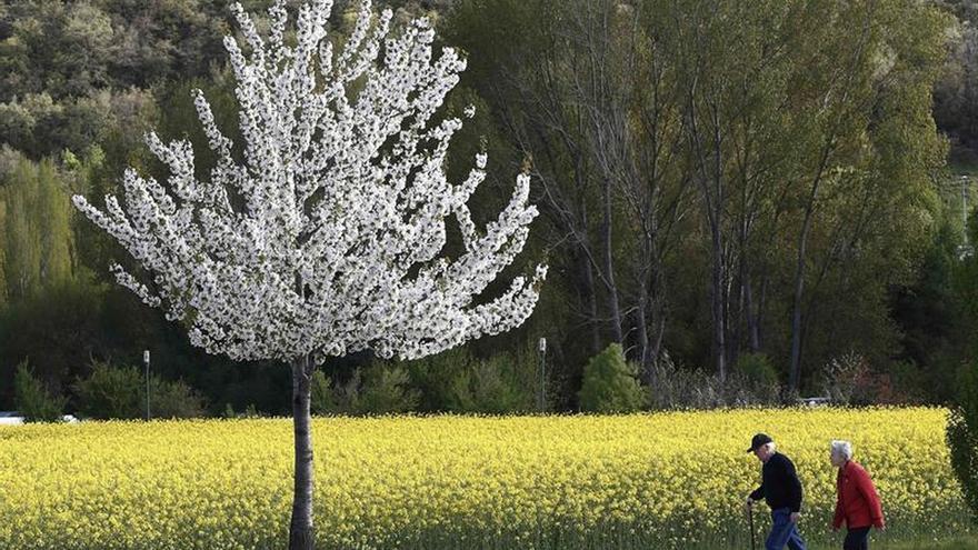 Suiza rechaza reformar las pensiones y dice sí a garantizar la seguridad alimentaria