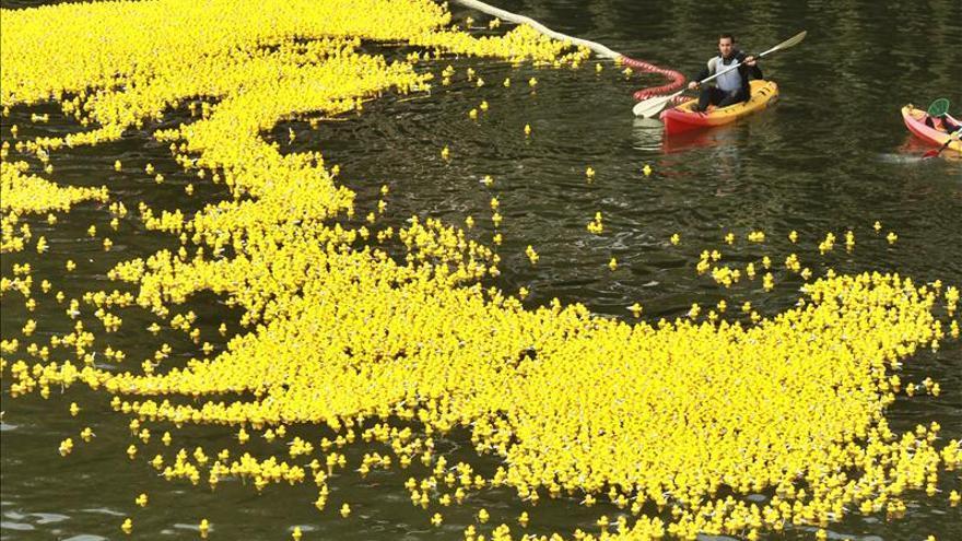 Treinta mil patitos de goma navegan en la r a de bilbao en un acto solidario - Patitos de goma para el bano ...
