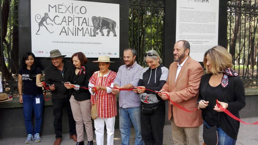 Inauguración de la exposición de fotografías de la Colección Toledo en las Rejas del Bosque de Chapultepec, Ciudad de México. que formó parte del proyecto México Capital Animal.