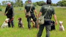 Agentes Medioambientales y Ecologistas rechazan la nueva Ley de caza