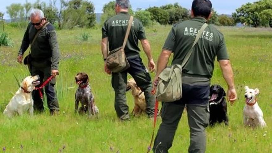 Agentes medioambientales, foto de la Asociación de Castilla-La Mancha