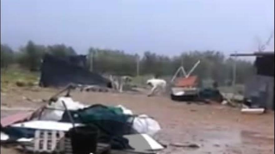 """El temporal arrasa la protectora de animales 'K-Project' de Fuente El Fresno (Ciudad Real) que pide ayuda """"urgentísima"""""""