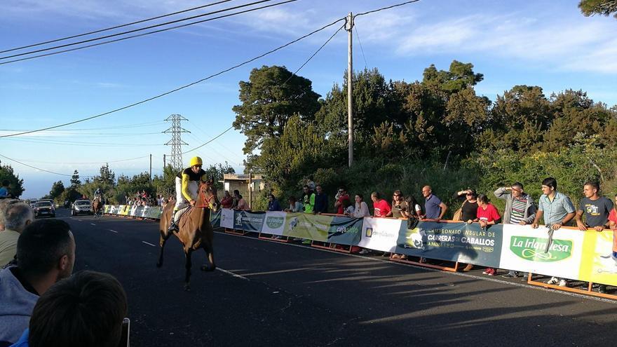 La primera jornada de la modalidad de velocidad del Campeonato Insular de Carreras de Caballos se celebró el domingo en el barrio de La Mata de Villa de Garafía.