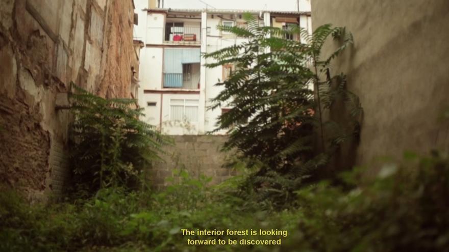 """Fotograma de """"El Bosc Interior"""". La Ciutat Construïda i Corinne Films, 2013."""