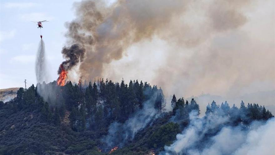 Incendio en Valleseco (Gran Canaria).