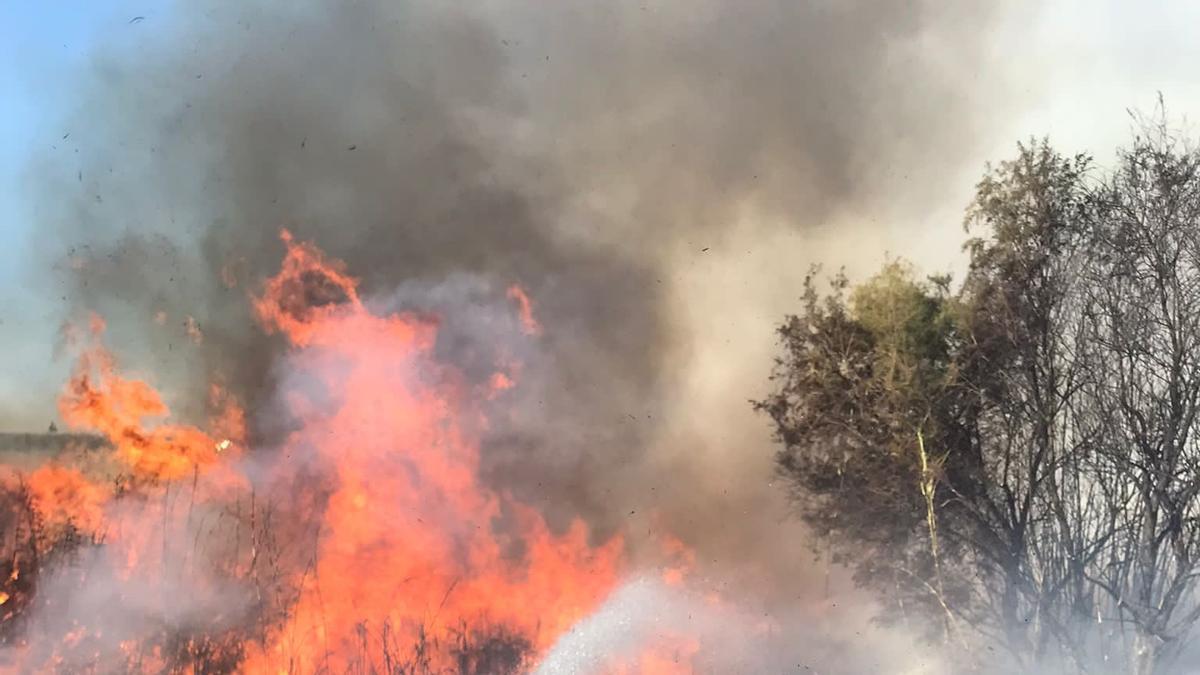 Bomberos del SEIS actuando en un incendio forestal en Córdoba