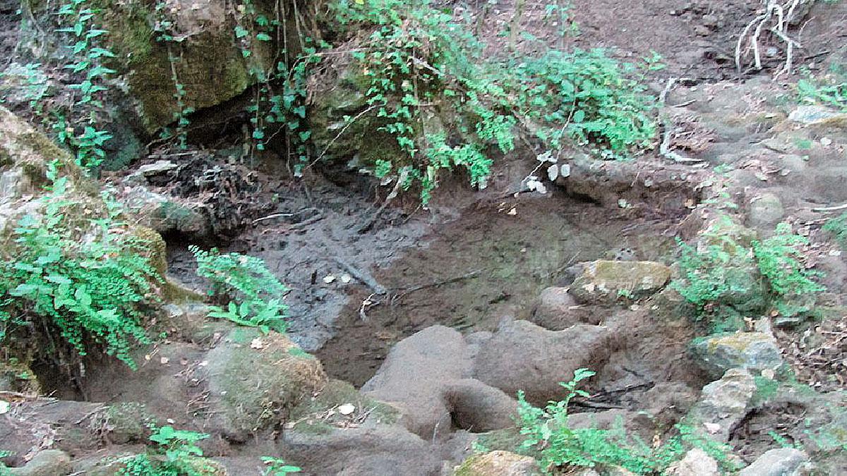 Sequía en el Arroyo Bejarano