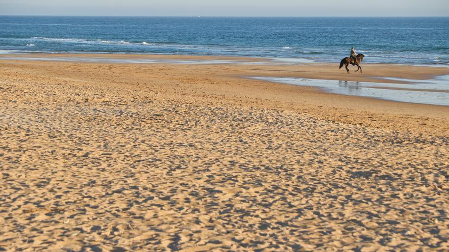 Playa de El Palmar, en la costa de Cádiz.