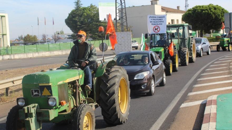 Tractorada de agricultores de Calamonte a las puertas de la Consejería de Agricultura