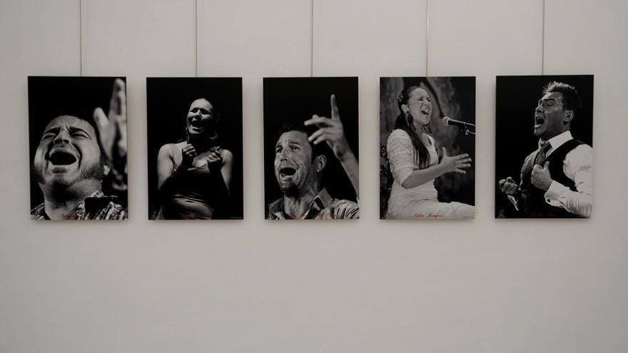 """Exposición """"Flamencos extremeños"""" del fotógrafo Diego Gallardo / Asamblea de Extremadura"""