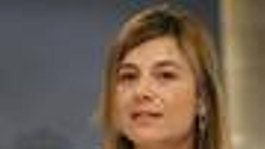 """Aído estudiará las """"sugerencias"""" del Consejo de Estado de cara al próximo Consejo de Ministros"""