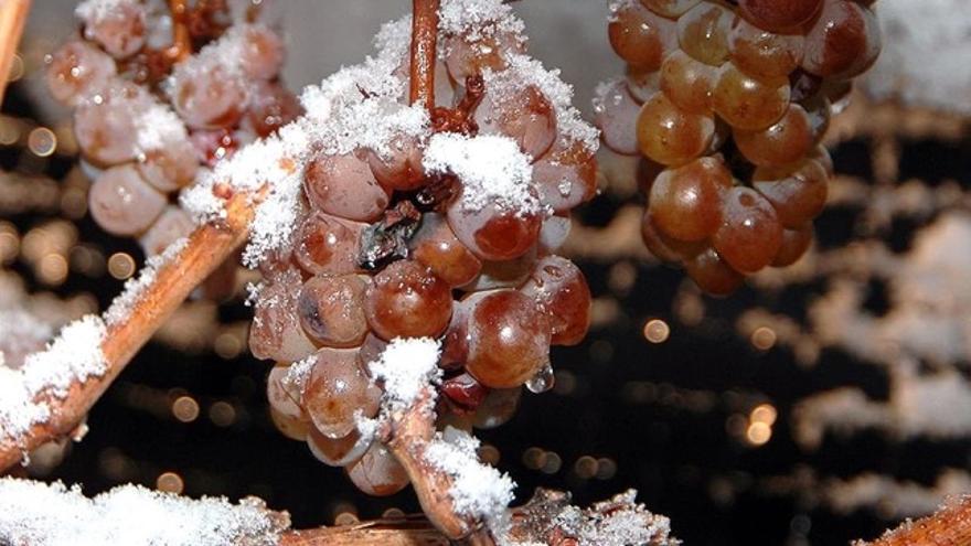 Vinos de hielo: seis ejemplos españoles al alcance de tu bolsillo