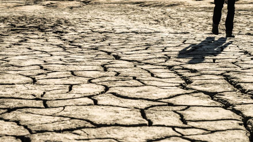 Las organizaciones critican que se adopten medidas de urgencia, en lugar de prever los episodios de sequía