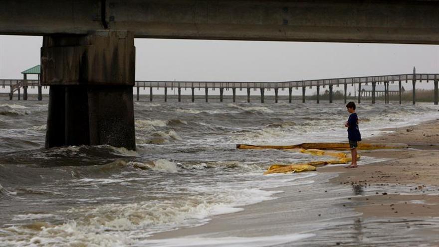 Científicos alertan de la rápida degradación de los mares en los últimos 20 años