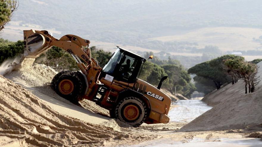 Una excavadora retira arena de la duna de Valdevaqueros (Tarifa)