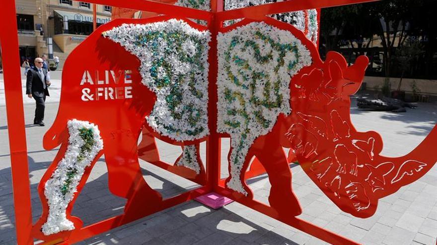La prohibición de la venta marfil divide a los países de la CITES