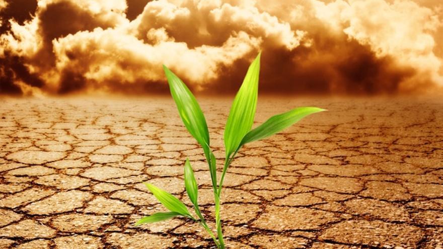 Te Explicamos Qué Es La Resiliencia Con Cuatro Ejemplos