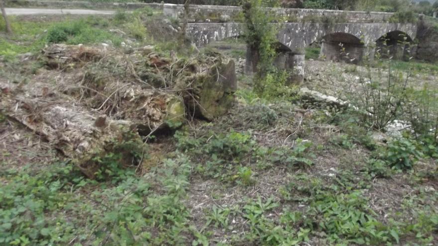 """Ecologistas en Acción denuncia una """"tala indiscriminada"""" de árboles en la ribera en el Saja"""