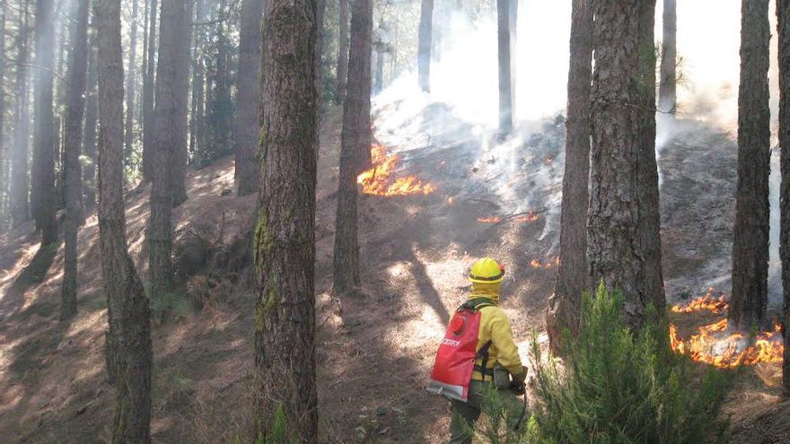 Las quemas controladas corren a cargo de profesionales de la Unidad de Medio Ambiente con alta formación, cualificación y larga experiencia en estas labores; y además cuentan con el apoyo técnico del Equipo de Prevención de Incendios Forestales (EPRIF) del Ministerio de Medio Ambiente.