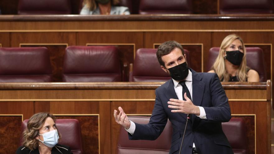 El líder del PP, Pablo Casado, interviene durante una sesión de control al Gobierno en el Congreso