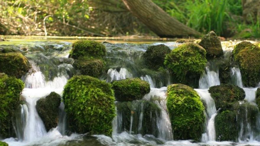 El tesoro del agua de la provincia de Sevilla, otro de los recursos a los que irá a parar el Plan Contigo