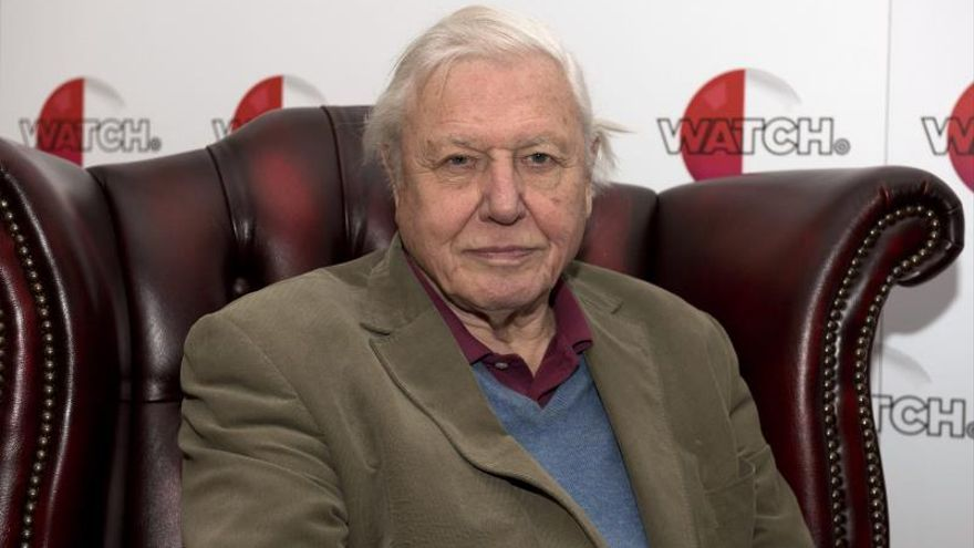 "Attenborough, la voz de la nueva serie de Netflix ""Our Planet"""