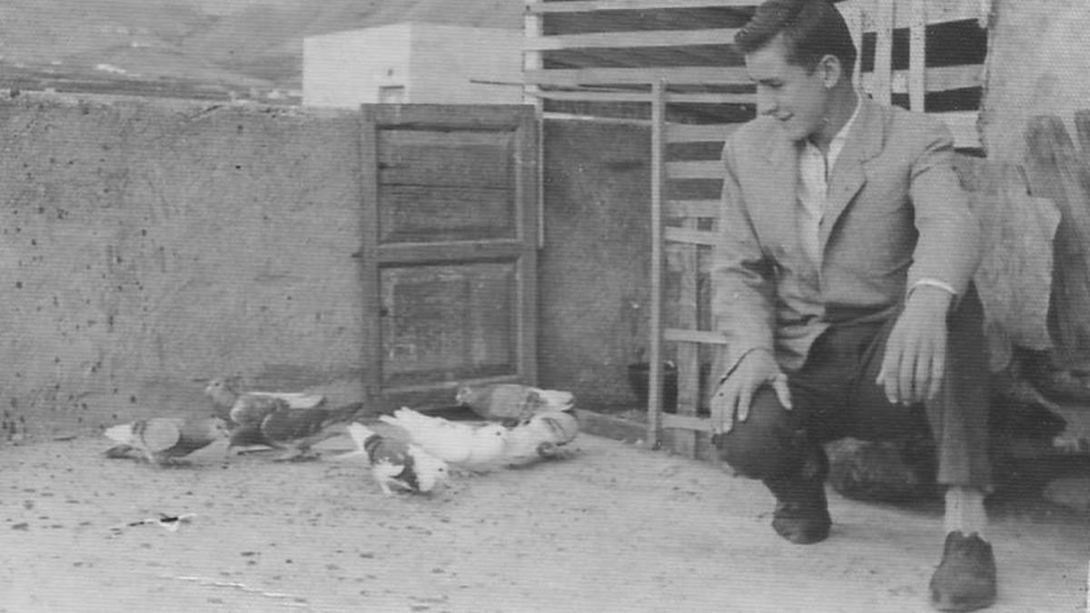 Un palomar en La Palma.