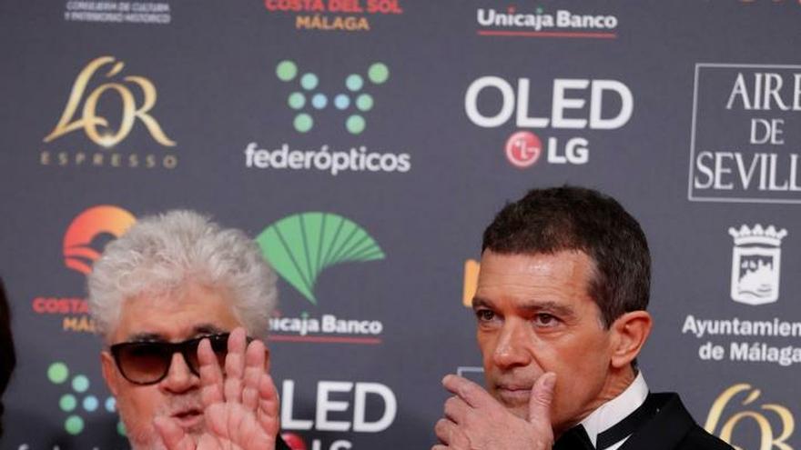 Almodóvar: voy a hablar a Pedro Sánchez de tú a tú, de Pedro a Pedro