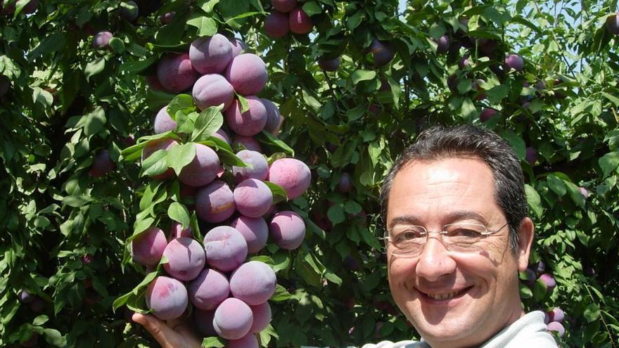 Atanasio Naranjo / http://www.tanynature.com/