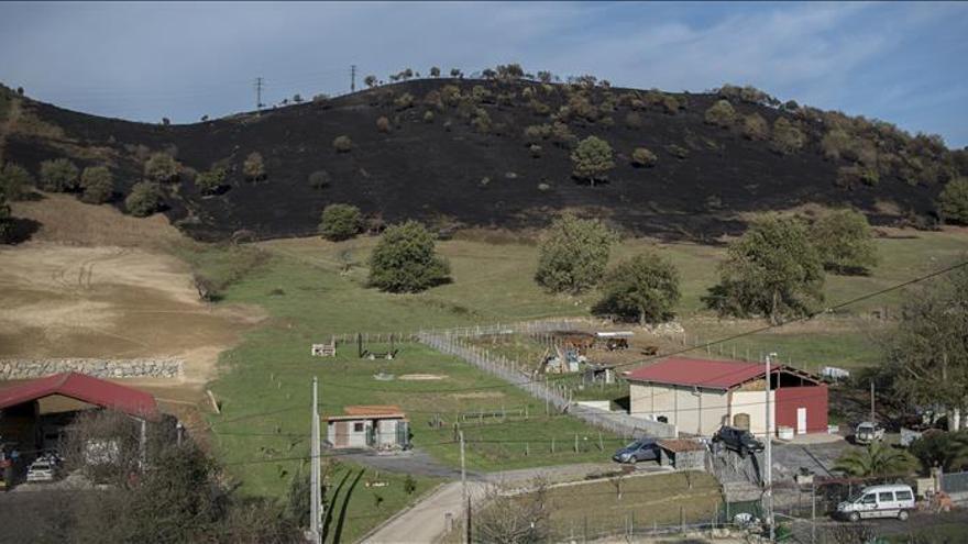 Un incendio forestal en Bizkaia obliga a desalojar a 25 personas en Bermeo