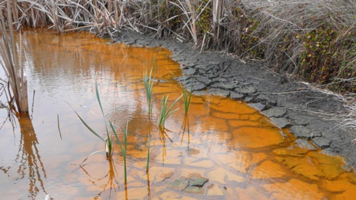 Las sequías, cada vez más frecuentes por el cambio climático.