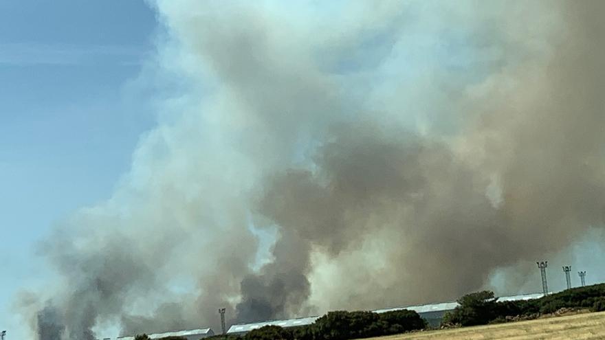 La UME se suma a las labores de extinción del incendio de Barchín del Hoyo