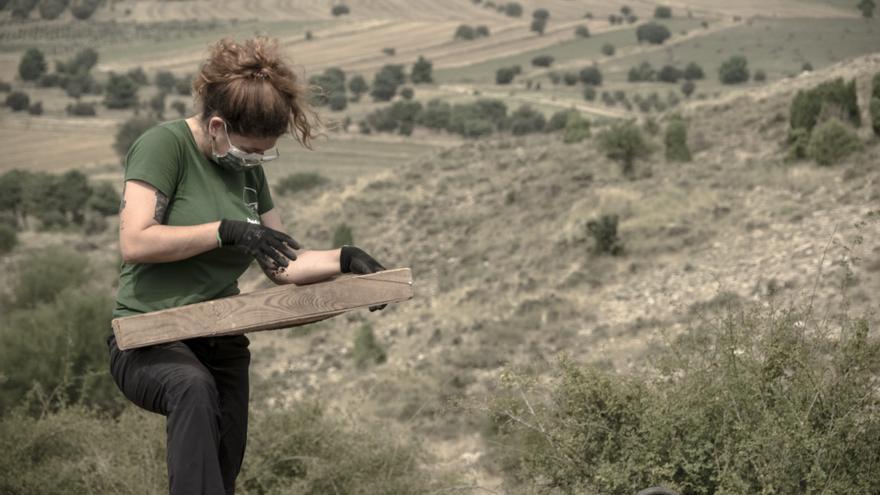 Una alumna del curso criba la tierra de la fosa en Vistabella del Maestrat.