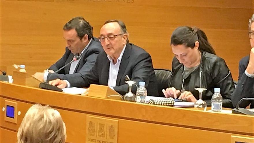 Javier García Lliberós, exgerente de la empresa pública Ciegsa, durante su comparecencia en las Corts