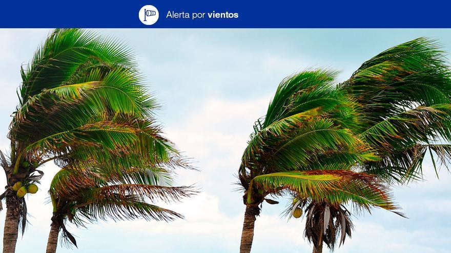 El viento soplará con fuerza en Canaria.