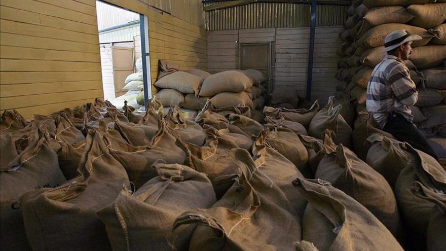 La producción de café de Colombia subió un 12 por ciento en los últimos doce meses