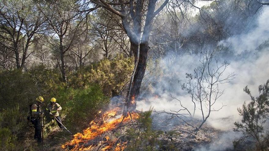 Bomberos permiten regresar a su casa a los desalojados por el fuego de Blanes