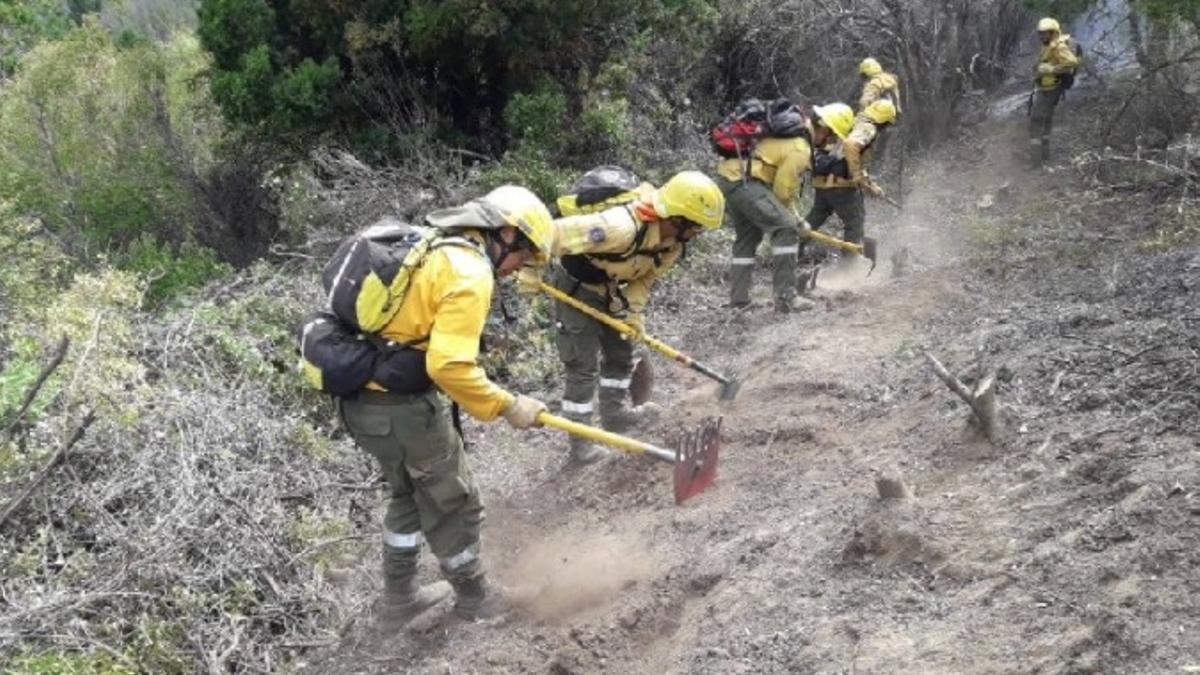 Más de 100 brigadistas trabajan para combatir el incendio en Río Negro.