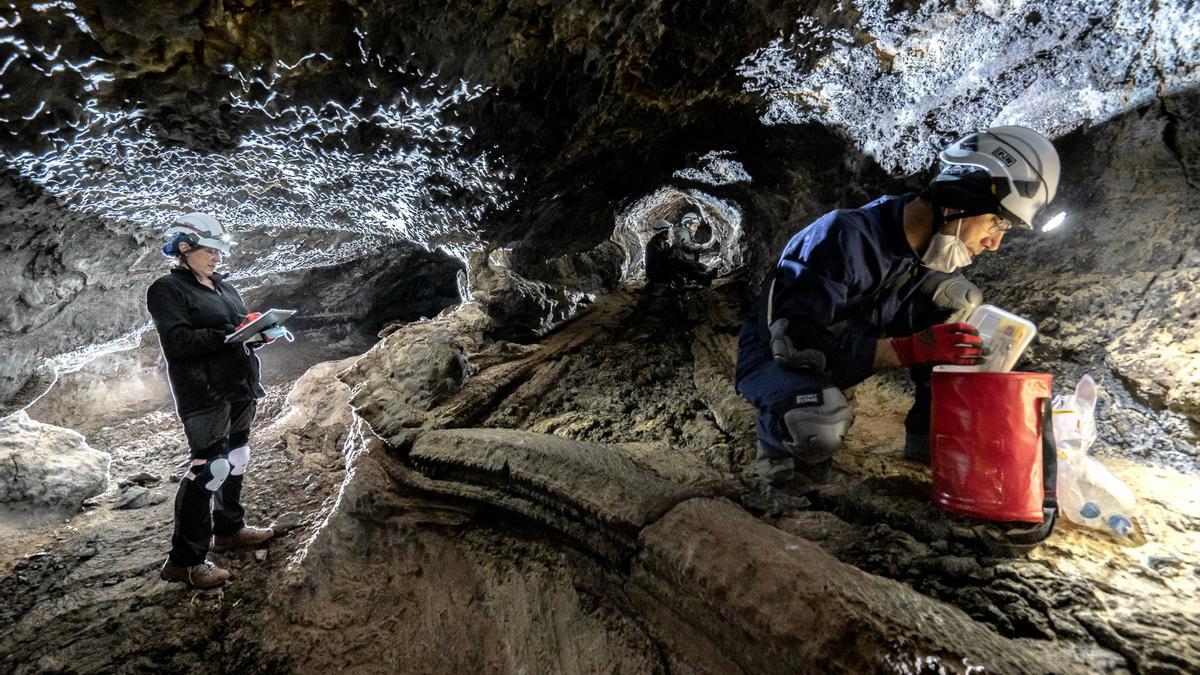 Equipo de Tubolan recogiendo muestras en uno de las tubos de lava en Lanzarote. Foto de Alessio Romeo